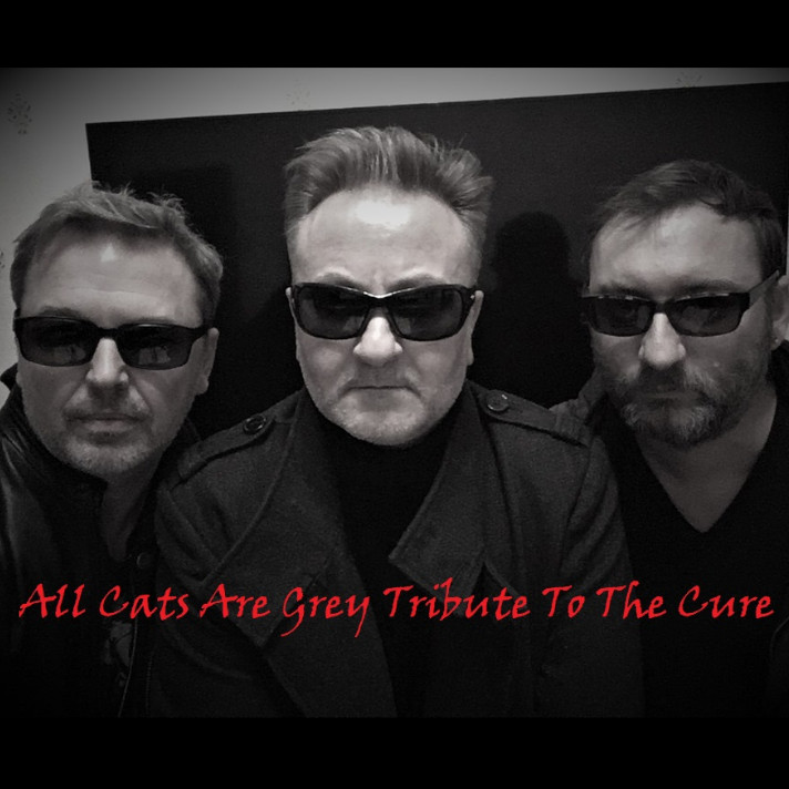 Cats are Grey Tribute The Cure